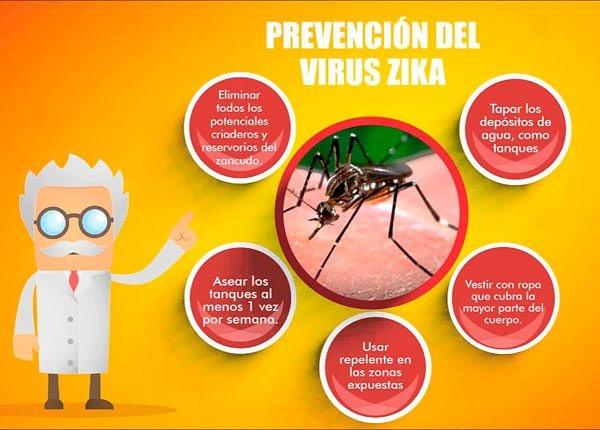 virus zika en embarazadas